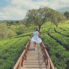 5 Destinasi Coban Bertingkat di Malang Bisa jadi destinasi Wellness Kamu